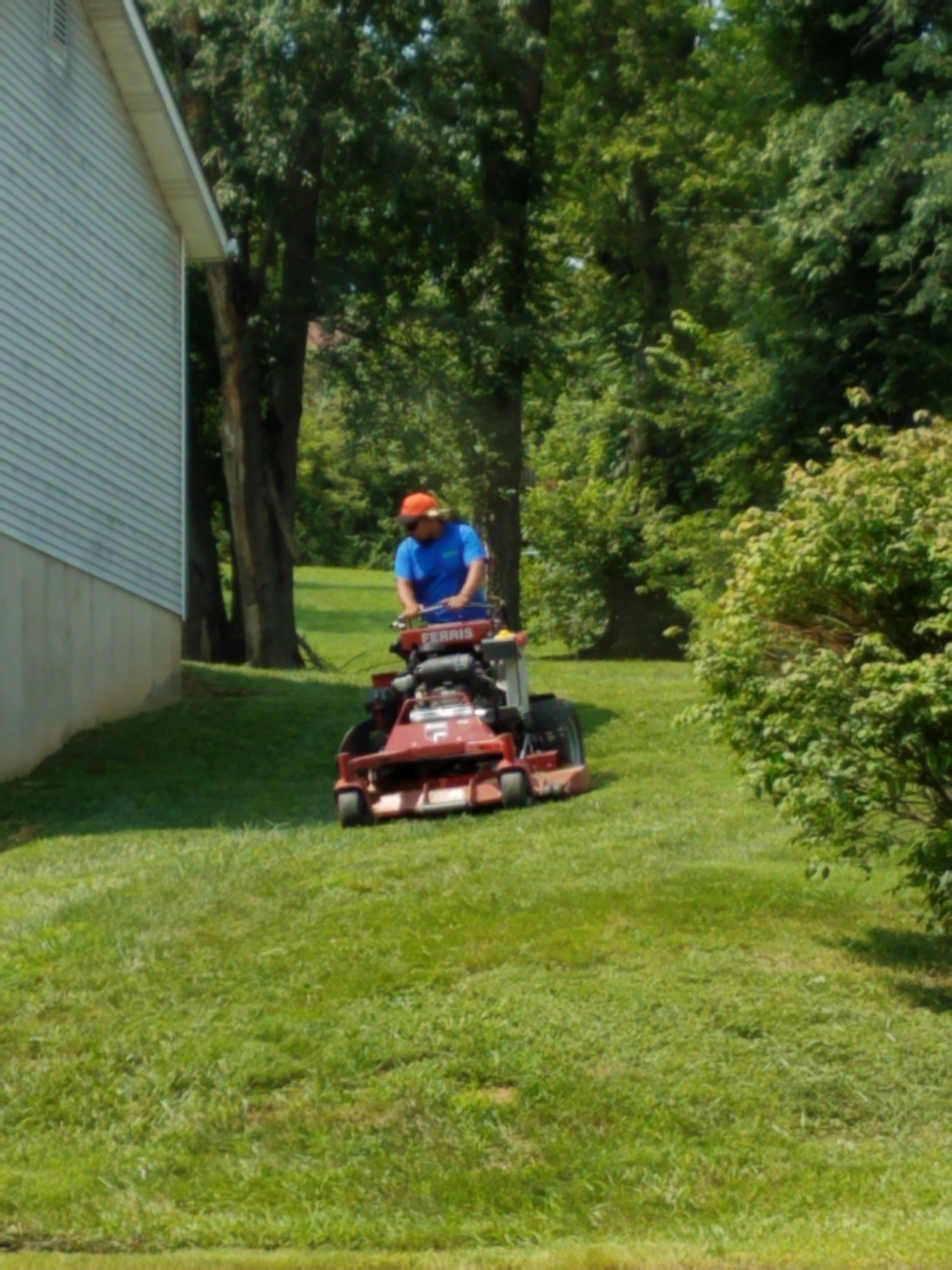 Lawn Mowing Maintenance Service St Louis Mo Area Pro Care Landscaping